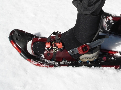 Crescent Moon Gold Series 9 Snowshoe REVIEW - 2