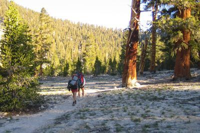 Notes from the Field: Summer on the Pacific Crest Trail - 6