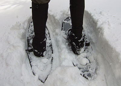 Northern Lites Backcountry Snowshoe REVIEW - 8