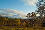 Autumn in Cairngorms National Park, Scotland - 3
