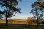 Autumn in Cairngorms National Park, Scotland - 9