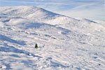 Winter in Cairngorms National Park, Scotland - 1