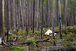 Photo Essay: A Traverse of the Bob Marshall Wilderness by Foot and Packraft - 25
