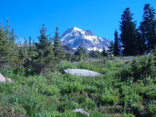 September Around Mount Hood - 13