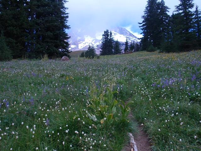 September Around Mount Hood - 2