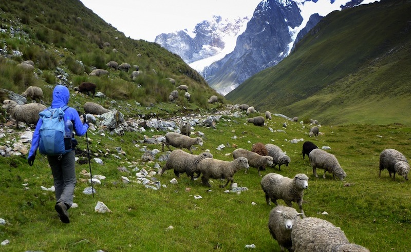 Valley Hopping in the Cordillera Huayhuash - 1