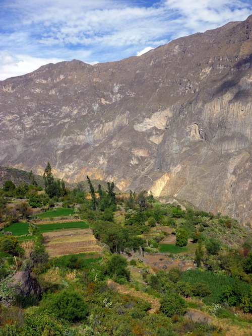 The Global Test:  Tall Tales from Colca Canyon, Peru - 11