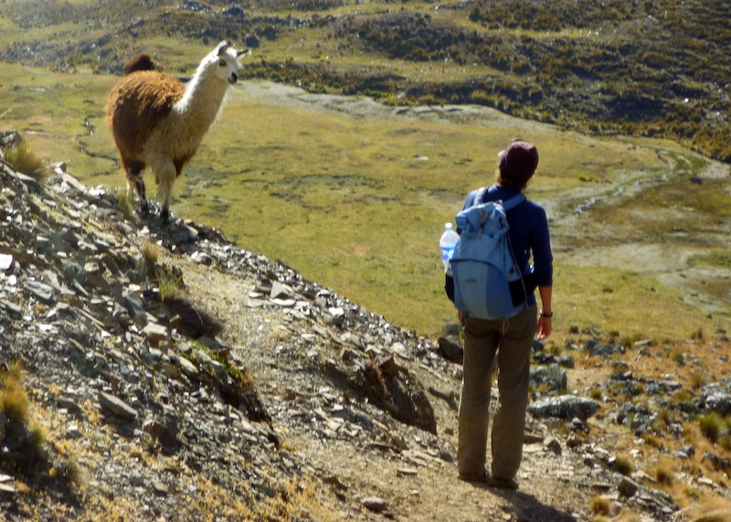 Global Test Photo Essay: Keepting it Real in Bolivia's Cordillera Real - 7