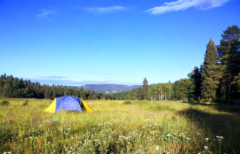 Continental Divide Trail Project Report: Hopewell Lake, NM, August 2011 - 1