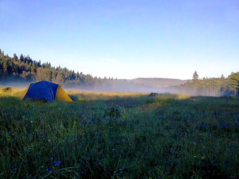 Continental Divide Trail Project Report: Hopewell Lake, NM, August 2011 - 9
