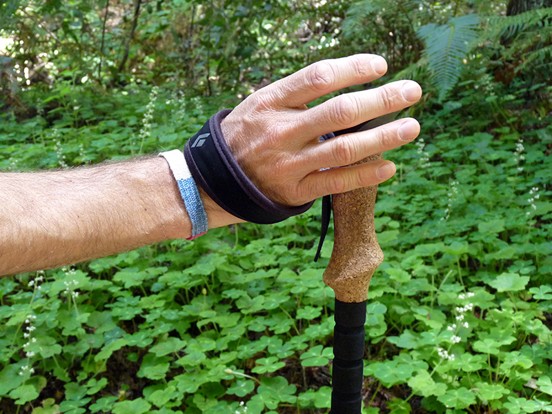 Effectively Using Hiking Poles: The Gas-Brake-Coast Method - 2