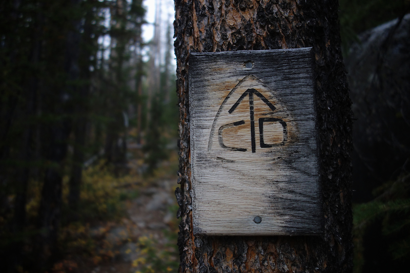 Anaconda-Pintler Wilderness: Photo Essay - 2