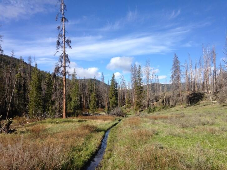 Specimen Creek Trail, Montana