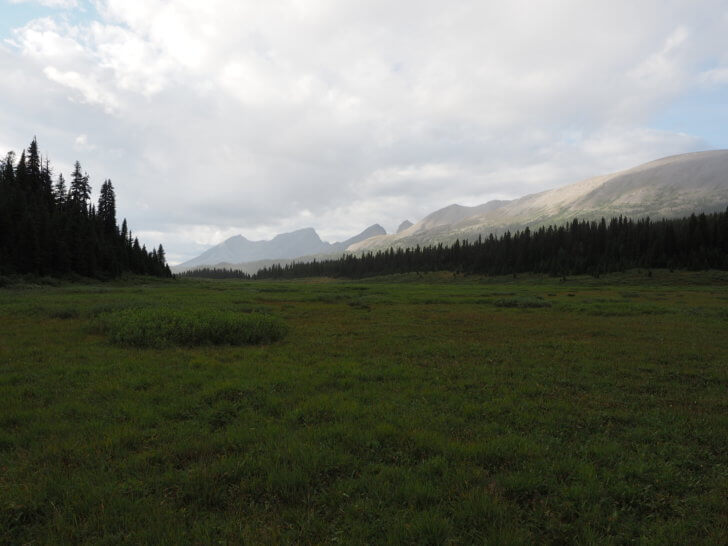 Meadow views near Lake Magog on the Marvel Pass Backpacking Trail.