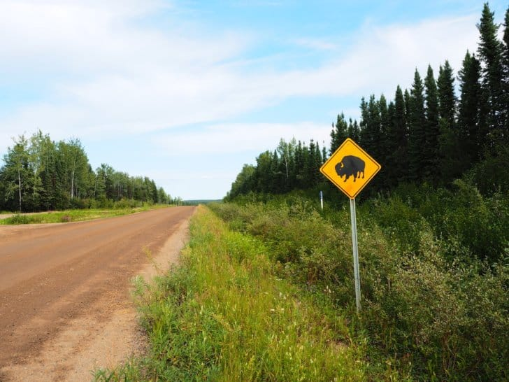 Nahanni River by Canoe: Another bison crossing sign