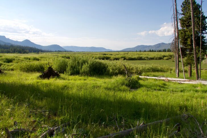 Hiking the Yellowstone Caldera Loop: Yellowstone R country