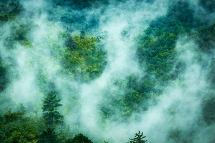Blue Smoke in the Smokies