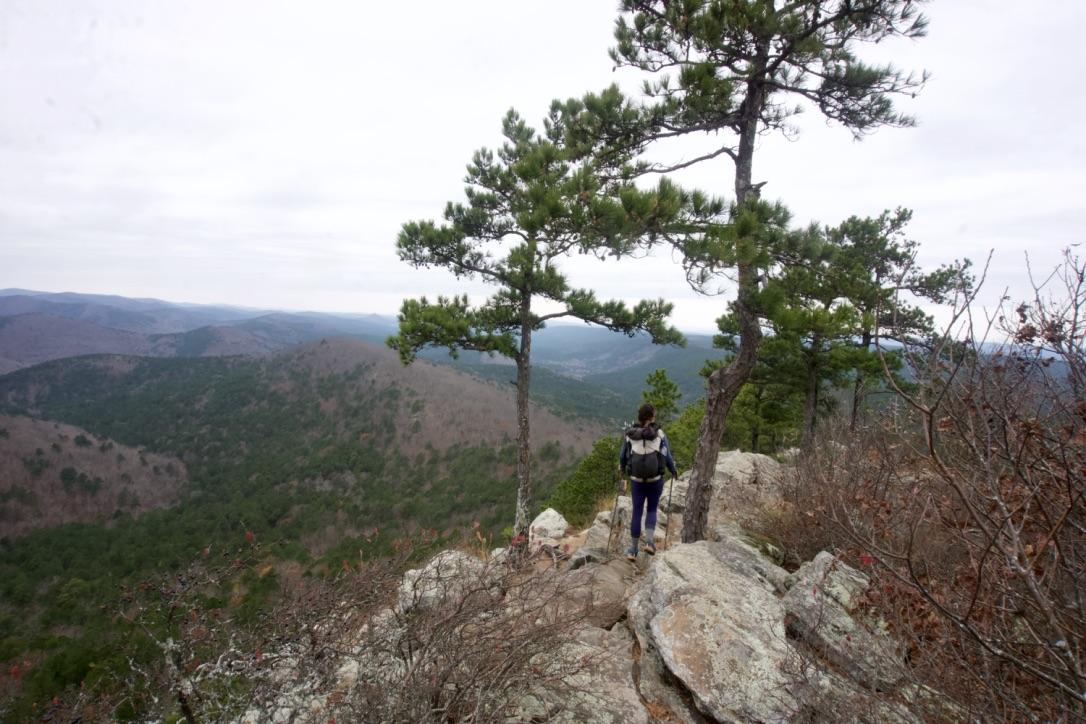 hiking on a ridge with trees