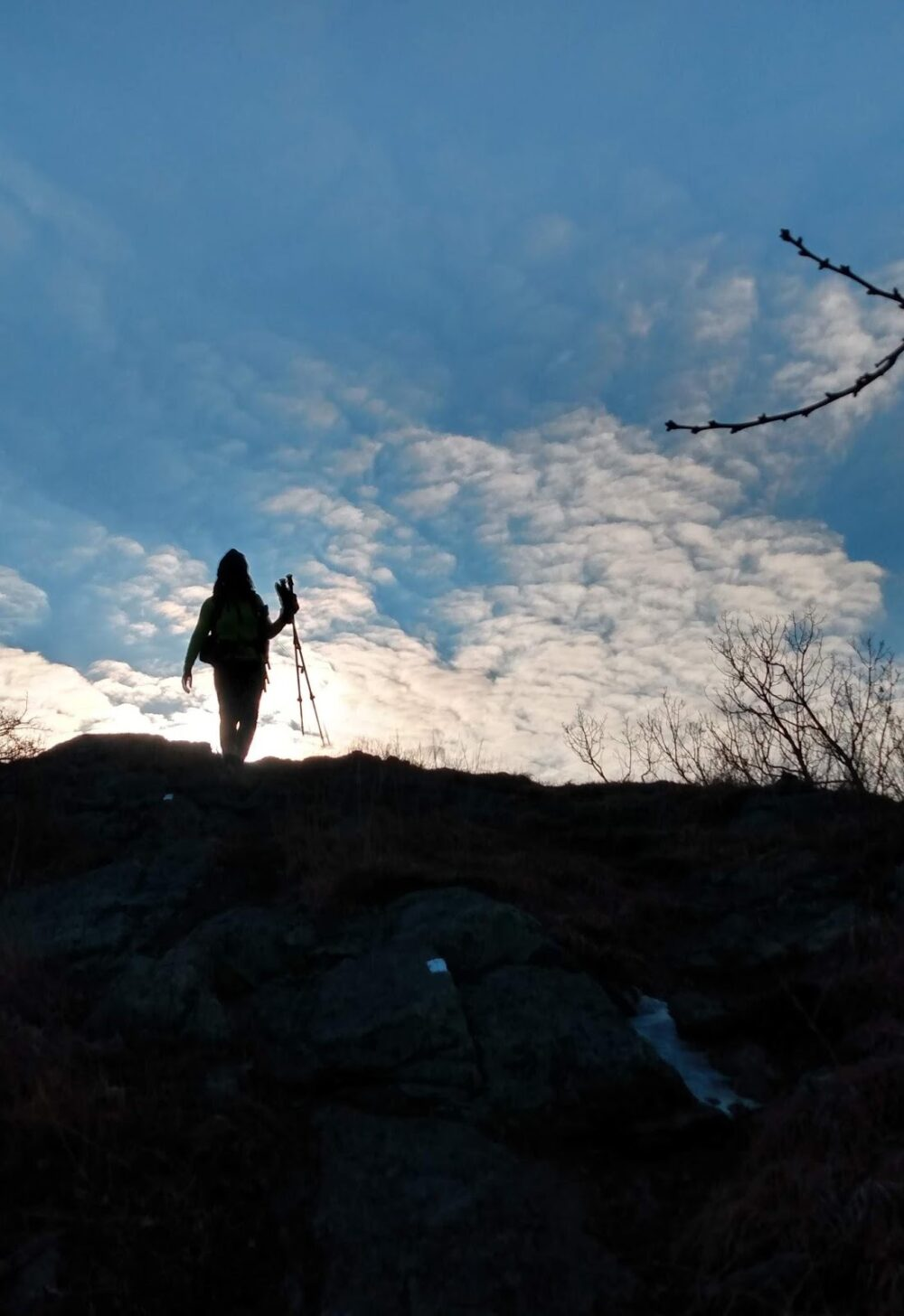 A woman with trekking poles walking on a ridge.