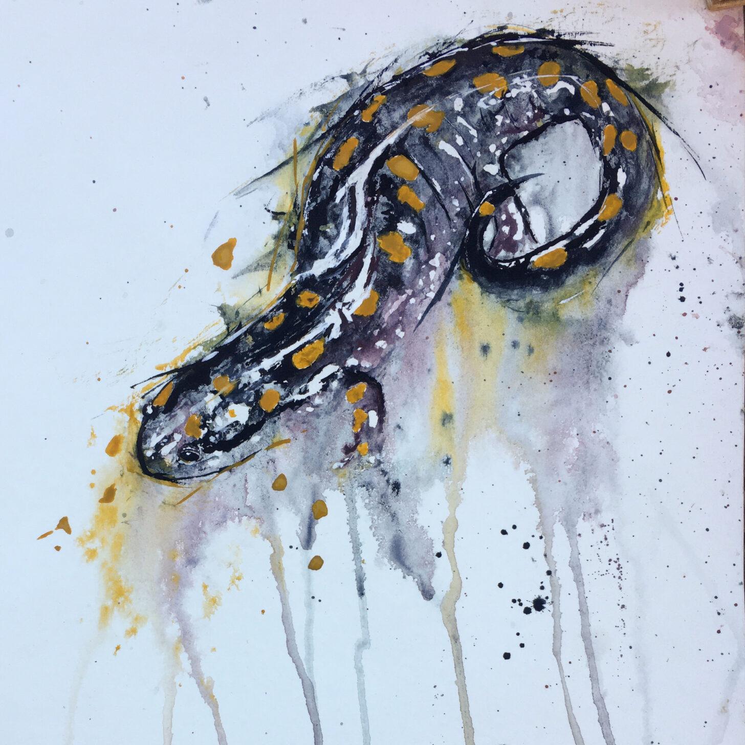 a watercolor painting of a salamander.