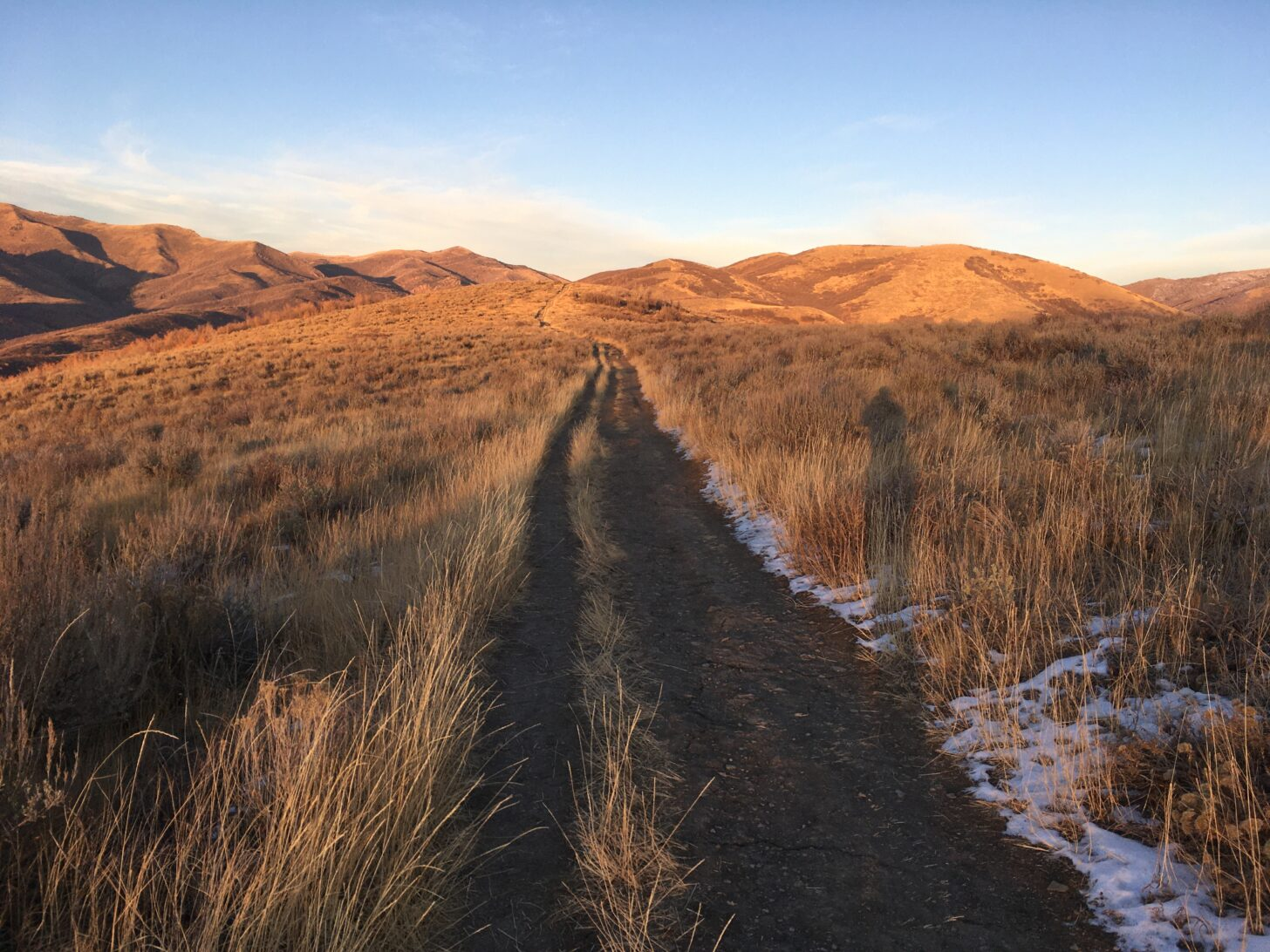 a trail vanishes into the desert