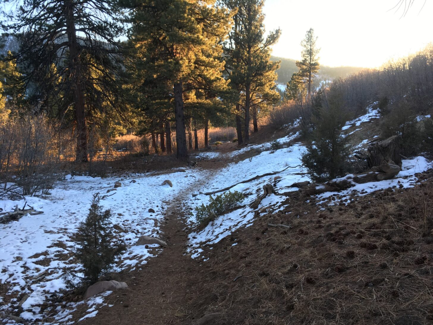a trail with a slight dusting of snow.
