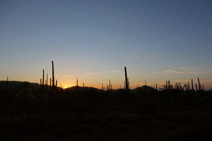a sunset over the desert