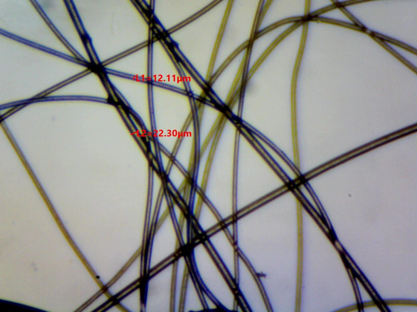 Primaloft Silver 3 oz Photomicrograph showing fiber diameter measurements of 12.11 and 22.30 microns.