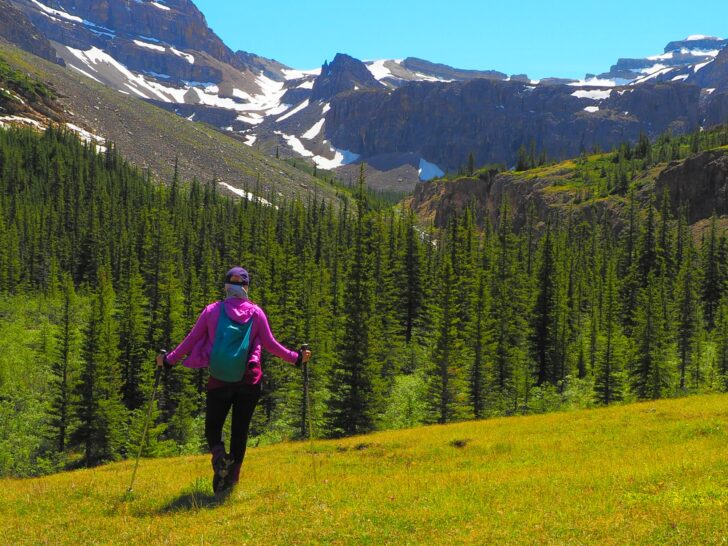 a woman stands in a mountain meadow with her back to the camera. In the distance, snow-capped mountains and trees.