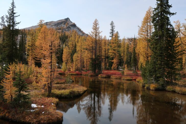 A shallow lake reflects autumn foilage. In the background, a lone peak towers above the forest.