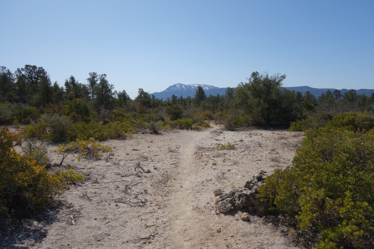 A sandy wash and some scrub brush in the foreground, with a blue mountain peak in the far distance.