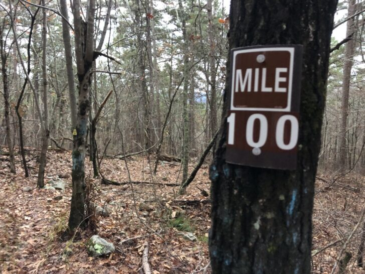 a sign on a tree that reads mile 100