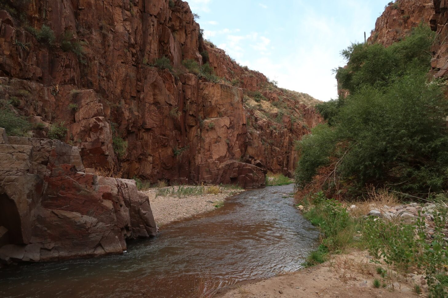 a stream flows through a low desert canyon.