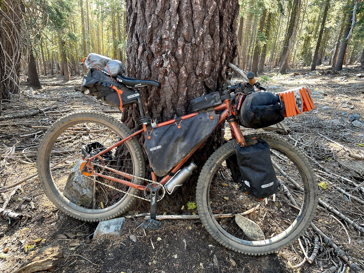 A bicycle leans up against a tree. It is loaded down with various bikepacking gear.