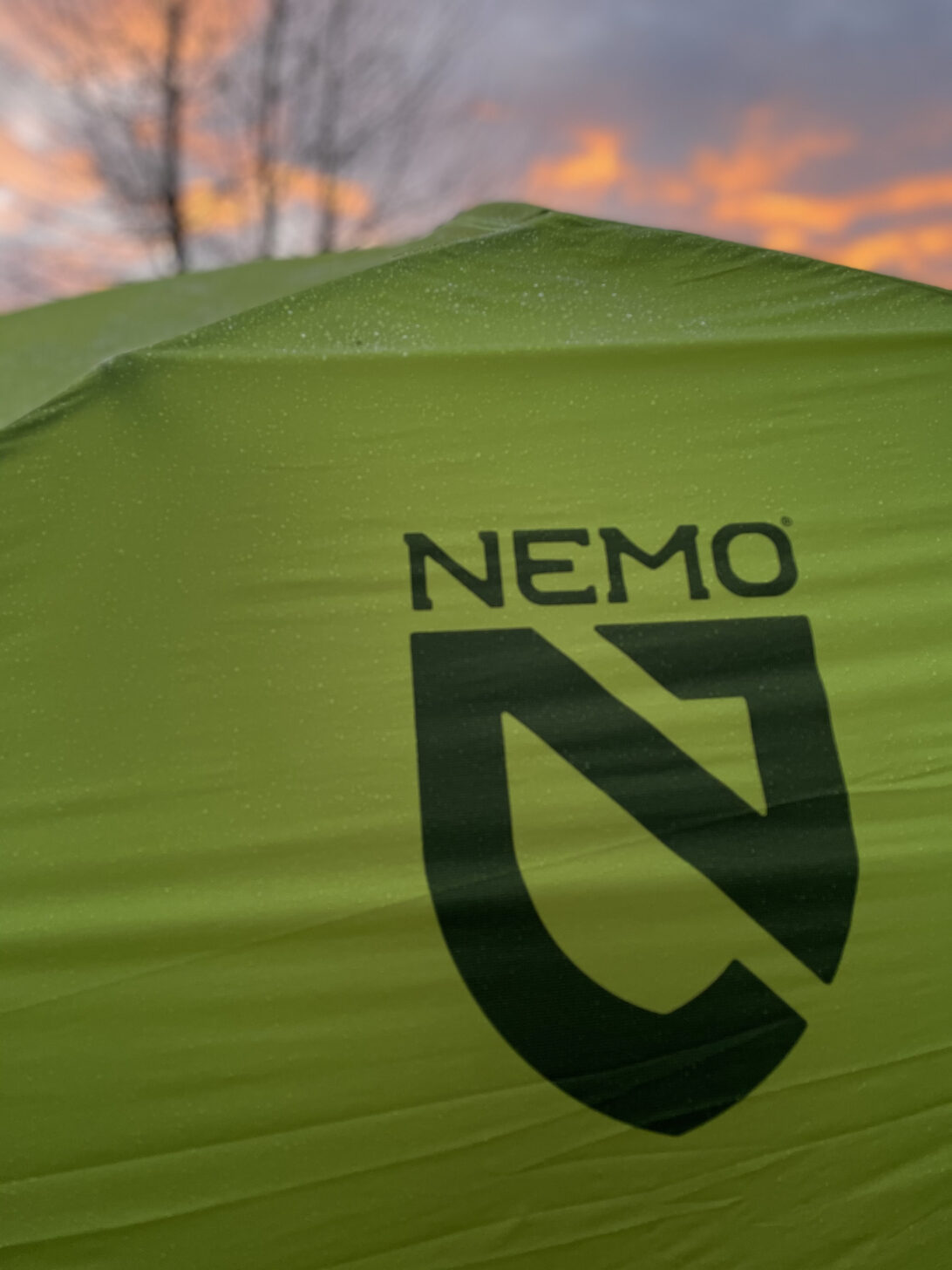 a close up of the NEMO logo with a sunset in the background.