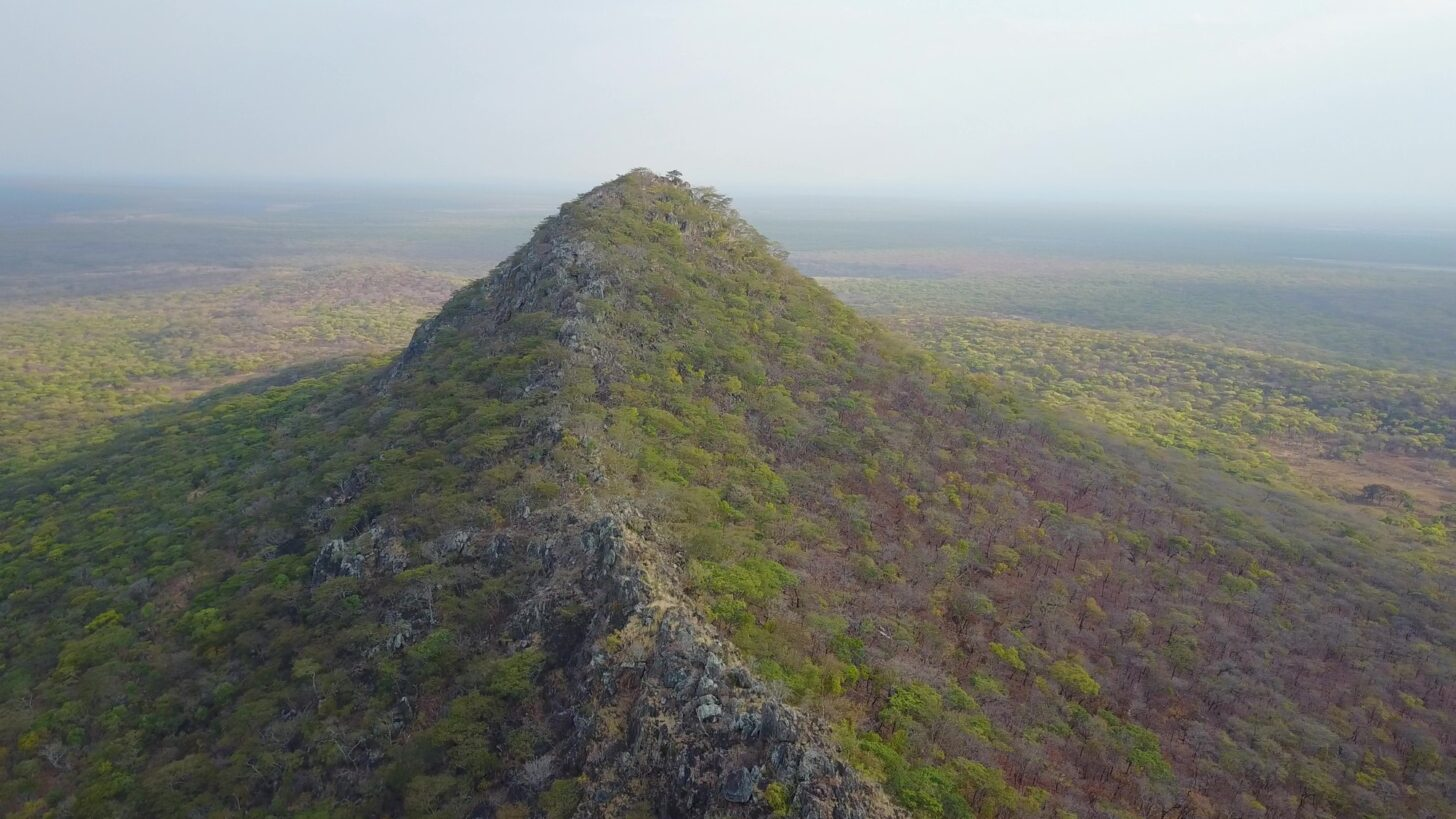 a densely forested ridge rises above the plains.