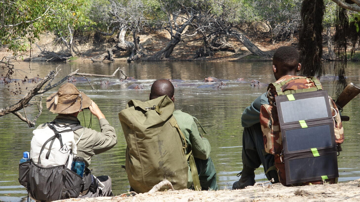 three men sit on a riverbank and watch hippos