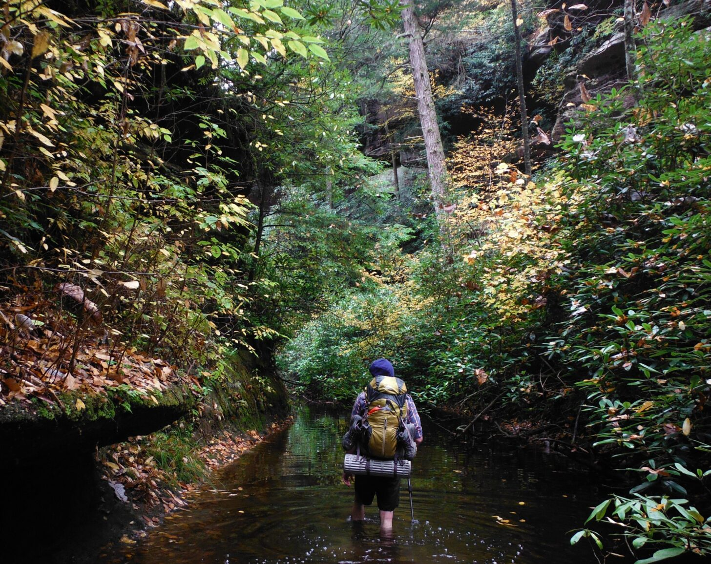 a man wades through a creek, walking away from the camera.