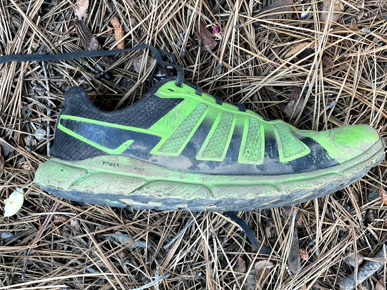 A green shoe sitting in a bed of pine needles