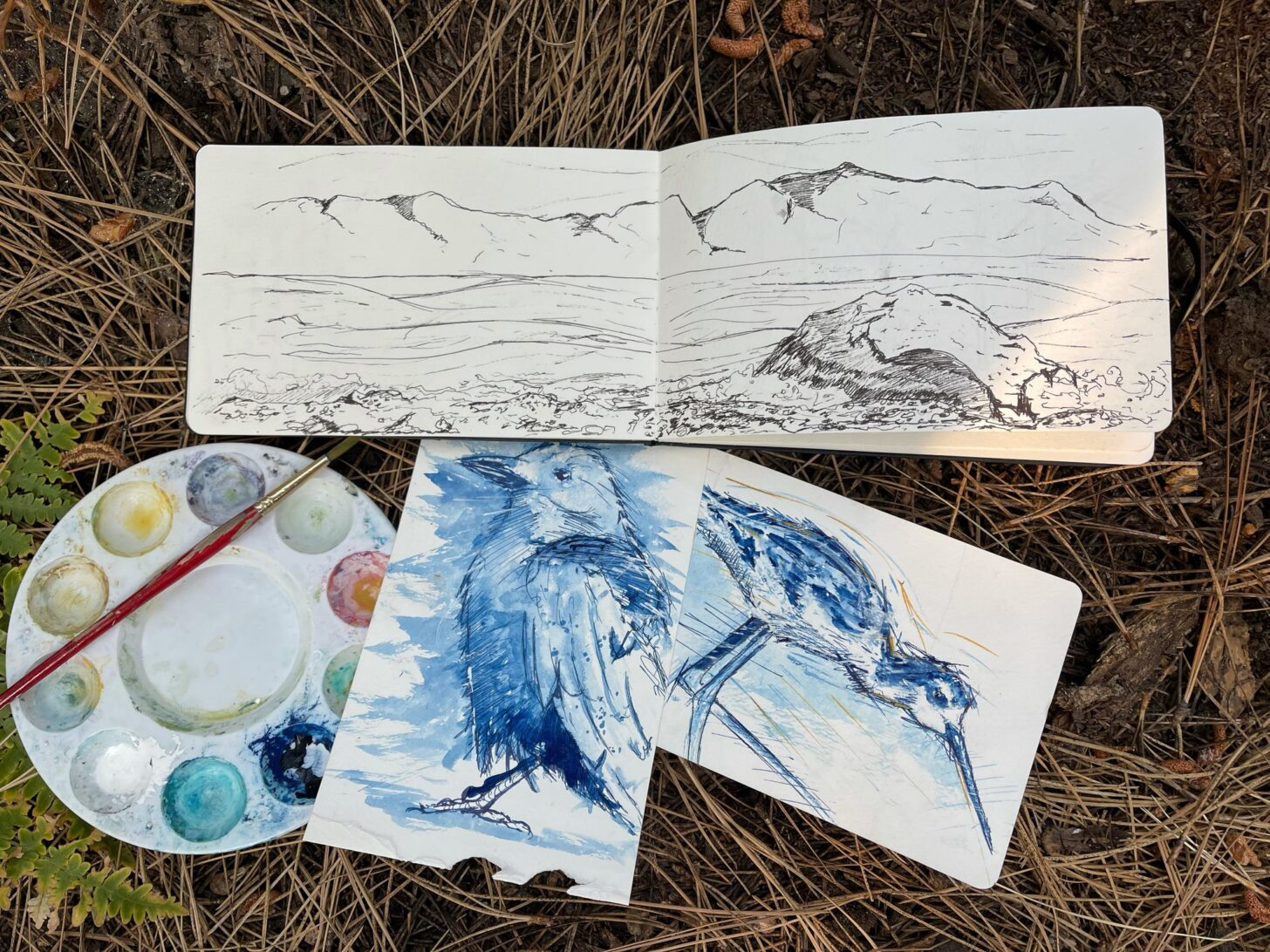 a sketchbook, two paintings of birds, a plastic paint tray, and a small brush resting in a cushion of pine needles.