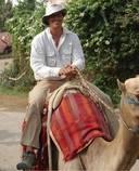 Profile photo of Joe Landa