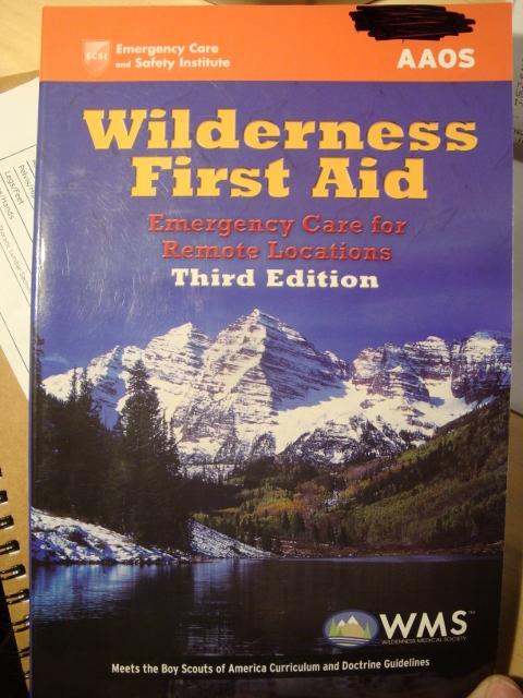 bsa wilderness first aid manual