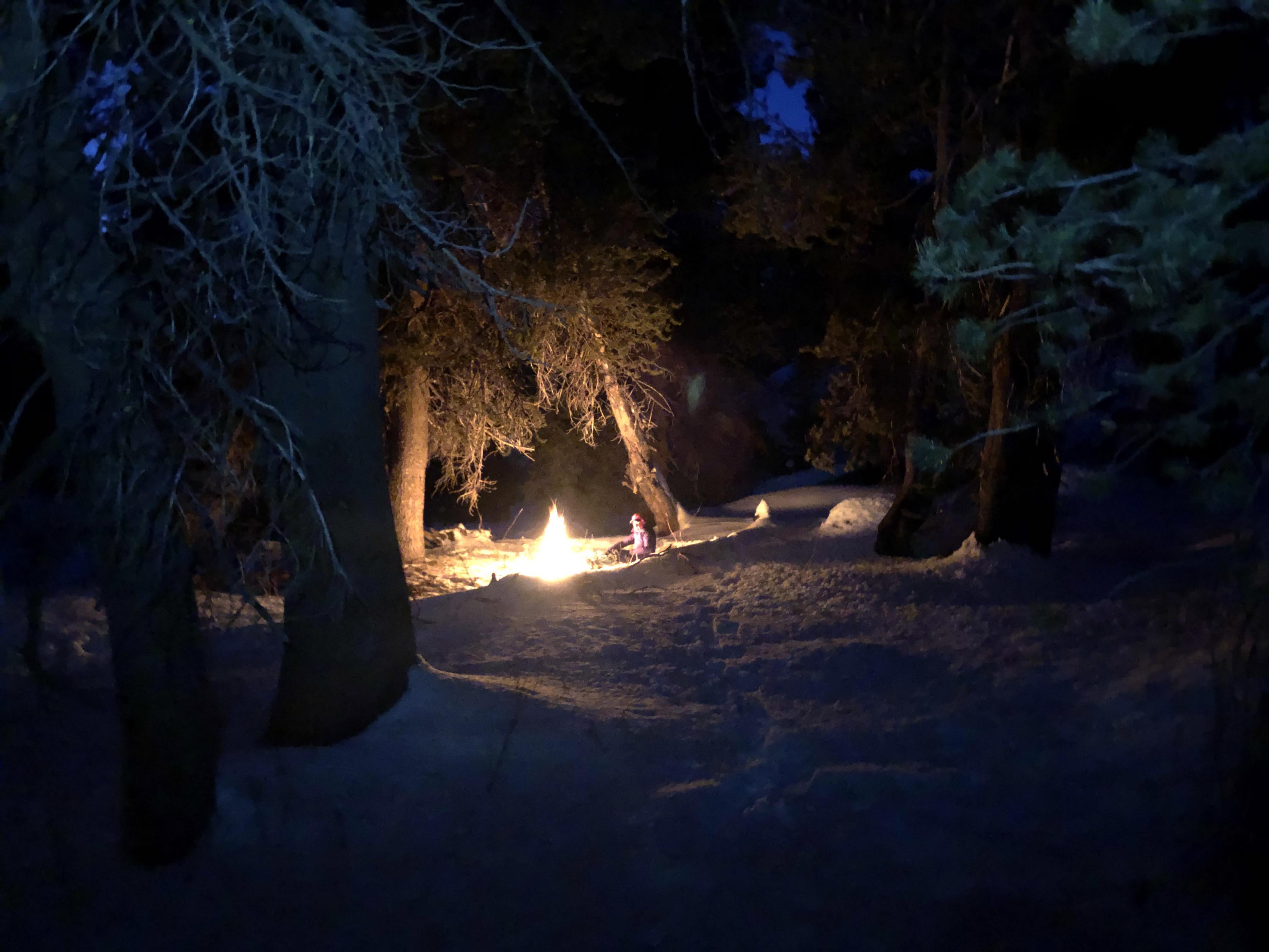 Campfire in Emigrant Wilderness